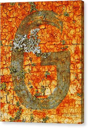 The Letter G With Lichens Canvas Print by Chris Berry