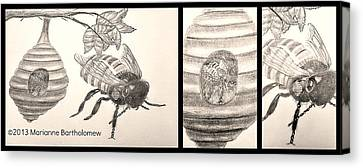 The Life Of The Bee Canvas Print by Marianne Bartholomew