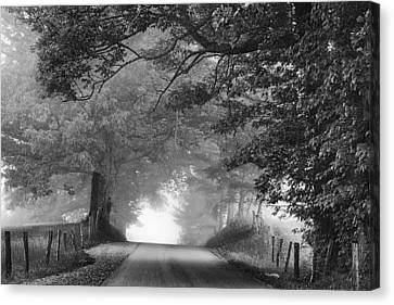 The Light Ahead Canvas Print by Andrew Soundarajan
