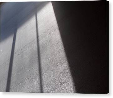 Canvas Print featuring the photograph The Light From Above by Steven Huszar