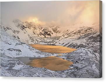 Winter Light Canvas Print - The Light by Krzysztof Mierzejewski