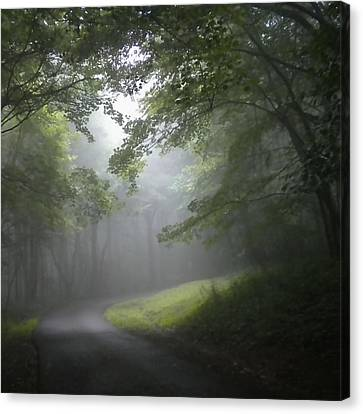 Canvas Print featuring the photograph The Light Leading Home 3 by Diannah Lynch