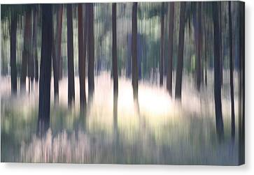 Divine Breath Canvas Print - The Light Of The Forest by Dreamland Media