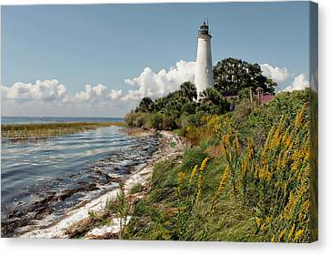 The Lighthouse At St. Marks Canvas Print by Lynn Jordan