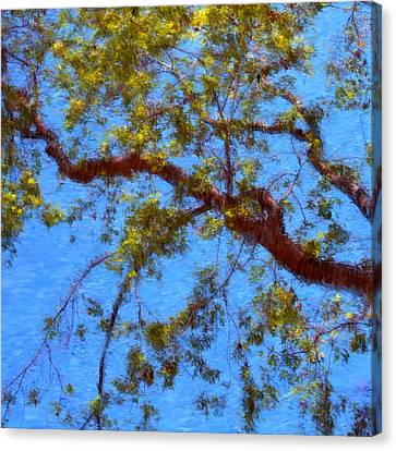 The Lilac Tree Canvas Print by Joann Vitali