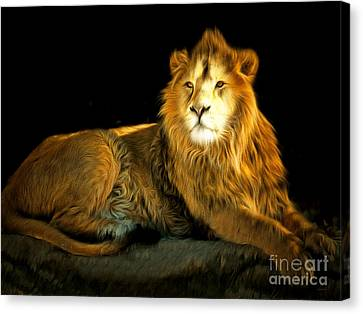 The Lion 201502113-2brun Canvas Print by Wingsdomain Art and Photography