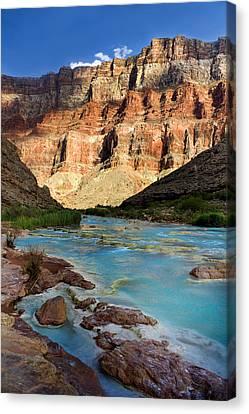 The Little Colorado  Canvas Print