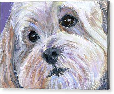 The Little White Dog Canvas Print by Hope Lane