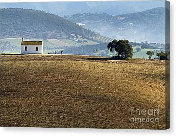 The Little White House In The Fields Canvas Print by Heiko Koehrer-Wagner