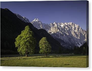 the Logar valley Canvas Print by Davorin Mance