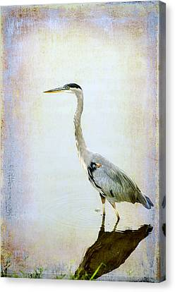 Canvas Print featuring the digital art The Lone Crane by Davina Washington