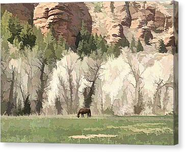 The Lone Horse Canvas Print by Ely Arsha