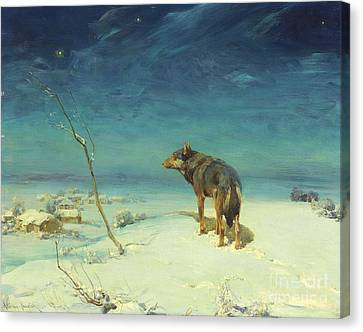 The Lone Wolf Canvas Print by Pg Reproductions