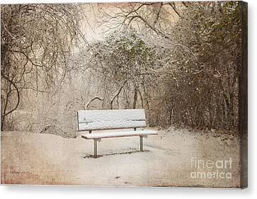 The Lonely Bench Canvas Print by Betty LaRue
