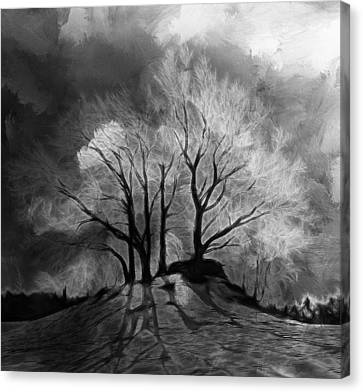 The Lonely Grave Canvas Print by Steve K