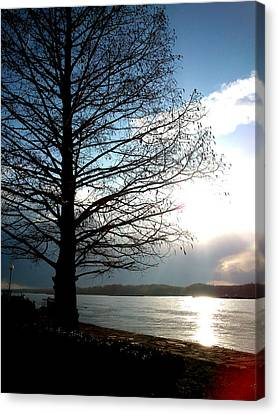 Canvas Print featuring the photograph The Lonely Tree by Lucy D