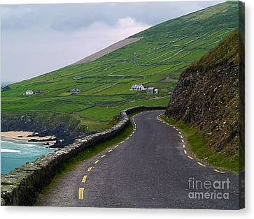 The Long And Winding Road Canvas Print by Patricia Griffin Brett