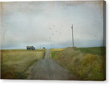The Long Road Home Canvas Print by Juli Scalzi