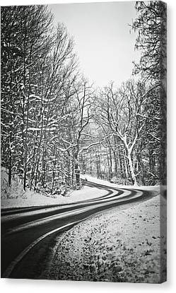 The Long Road Of Winter Canvas Print by Sara Frank