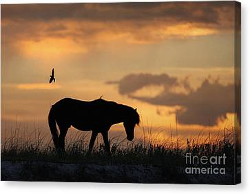 The Longing Canvas Print by Lyndsey Warren