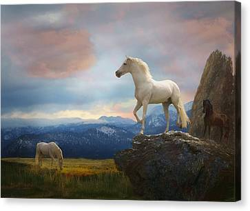 The Look Out Canvas Print by Melinda Hughes-Berland