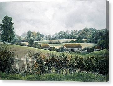 The Lost Hedgerow Canvas Print
