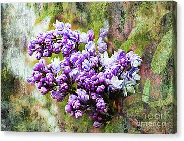 The Lovely Lilac Canvas Print by Andee Design