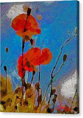 The Lovely Poppies Tnm Canvas Print by Vincent DiNovici