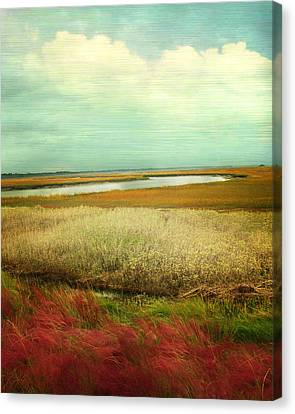 The Low Country Canvas Print by Amy Tyler