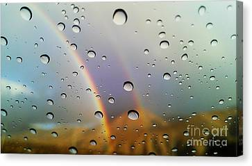 Canvas Print featuring the photograph The Luck Of Rain by Chris Tarpening