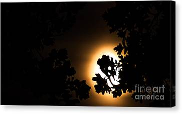 The Lunar Glow Canvas Print by Optical Playground By MP Ray
