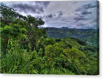 The Lush Greens Of Costa Rica Canvas Print by Andres Leon