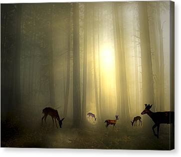 The Magic Of Sunrise Canvas Print by Diane Schuster
