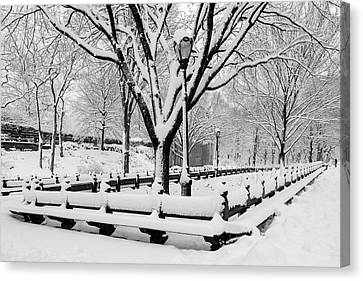 The Mall At Nyc Central Park Canvas Print by Susan Candelario