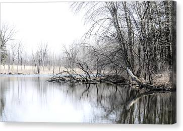 The Marsh Canvas Print by Julie Palencia