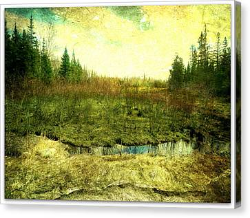 The Marshland  Canvas Print by Dianne  Lacourciere