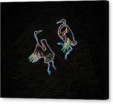The Mating Dance Canvas Print by Nancy Werner and Mike Flake