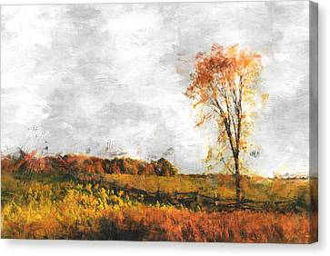 The Meadow Tree - Pt01 Canvas Print by Variance Collections