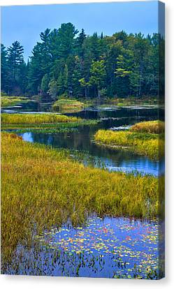 The Meandering Moose River - Old Forge New York Canvas Print by David Patterson