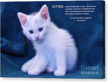 The Meaning Of A Kitten Canvas Print by Elaine Manley
