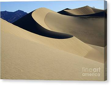 The Mesquite Dunes Of California Canvas Print by Bob Christopher