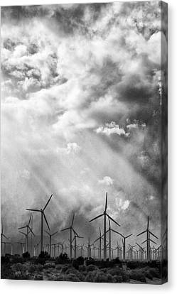 The Mighty Wind Palm Springs Canvas Print by William Dey