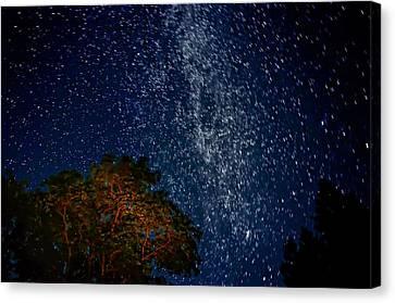 The Milky Way 2 Canvas Print by Steve Harrington