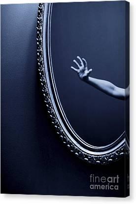 The Mirror Canvas Print by Diane Diederich