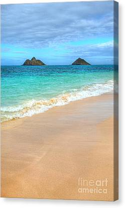 The Mokes Canvas Print by Kelly Wade