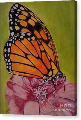 The Monarch Canvas Print by Suzette Kallen
