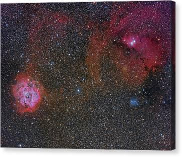 Monoceros Canvas Print - The Monoceros Region Showing by Roberto Colombari
