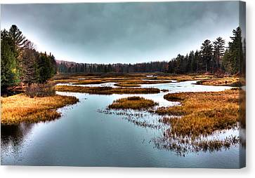 Fir Trees Canvas Print - The Moose River - Old Forge New York by David Patterson