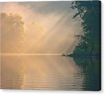 Canvas Print featuring the photograph The Morning After by Tom Cameron
