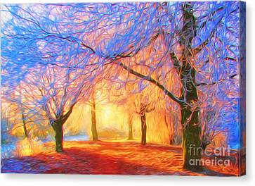 The Morning Light Canvas Print by Veikko Suikkanen